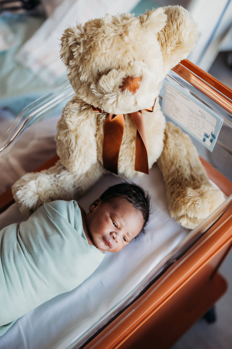 Fresh 48 Photography, a little baby lays in a bassinet with a large teddy bear also nearby