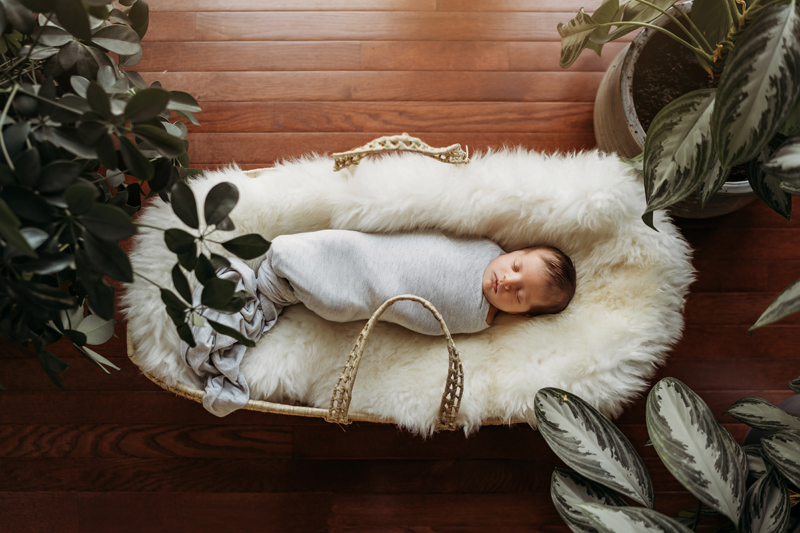 Newborn Photography, a baby sleeps in a basket cozily on a fur blanket and wrapped warmly
