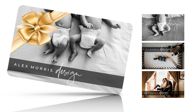 alex morris design photography newborn gift card