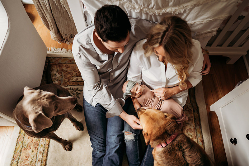 newborn photography, new mom and dad sit on the nursery floor looking at their baby, their dogs are also nearby
