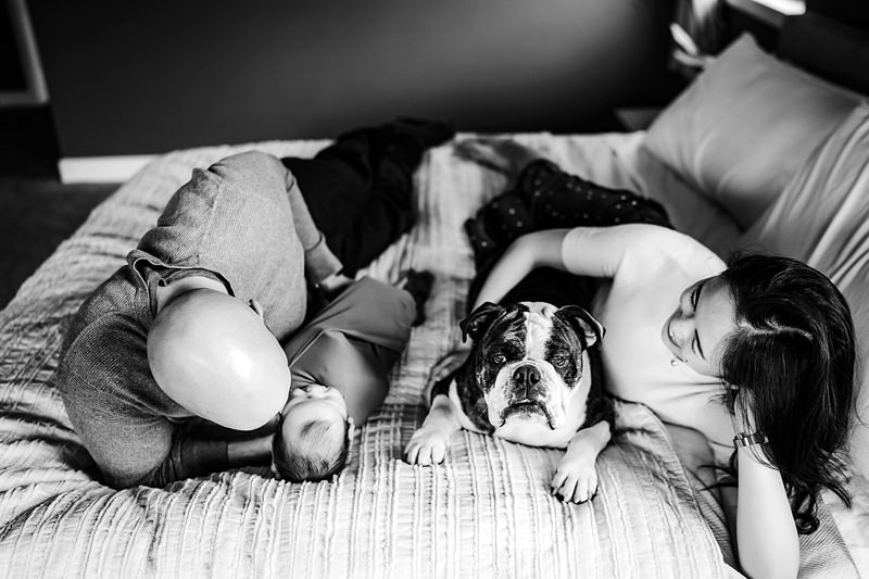 alex morris design, denver newborn photographer, baby lifestyle in home photos dog